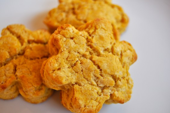 Sweet Potato Biscuits » Tribeca Yummy Mummy